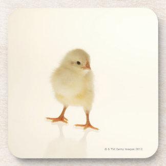 Pollo del bebé posavasos de bebida