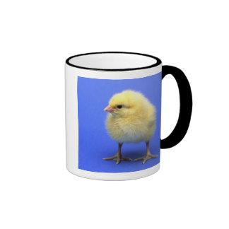 Pollo del bebé tazas de café