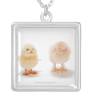 Pollo del bebé y pollo mecánico falso grimpolas personalizadas