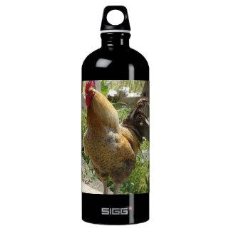 Pollo del corral