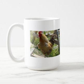 Pollo del corral taza