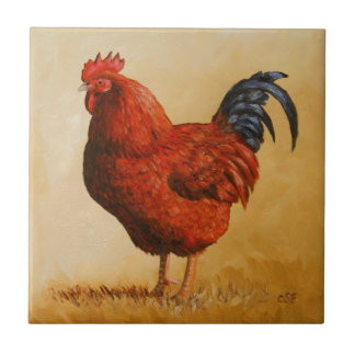 Pollo del gallo del rojo de Rhode Island Azulejo Cuadrado Pequeño