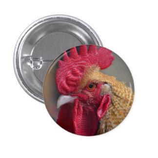 Pollo del gallo pin redondo de 1 pulgada