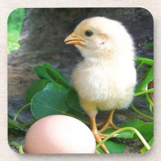 Pollo del polluelo del bebé con el huevo rosado posavaso