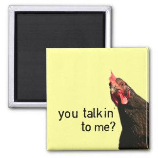 ¿Pollo divertido de la actitud - usted talkin a mí Imán Cuadrado