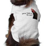 ¿Pollo divertido de la actitud - usted talkin a mí Camisas De Mascota