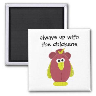 Pollo divertido del dibujo animado con decir iman para frigorífico