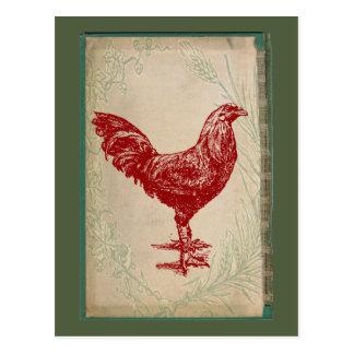 Pollo elegante lamentable del Grunge del gallo Tarjetas Postales