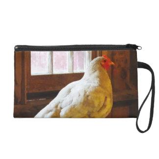 Pollo en granero