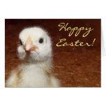 Pollo feliz del bebé de Pascua Felicitación