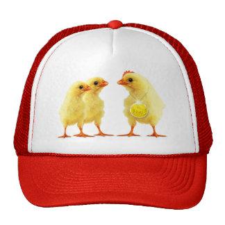 Pollo heroico gorras