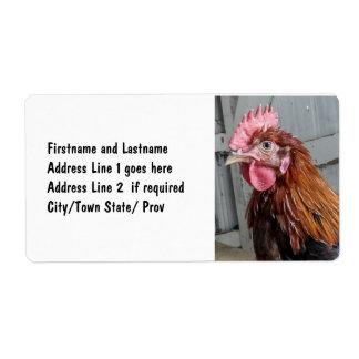 Pollo joven del gallo de Welsummer Etiquetas De Envío