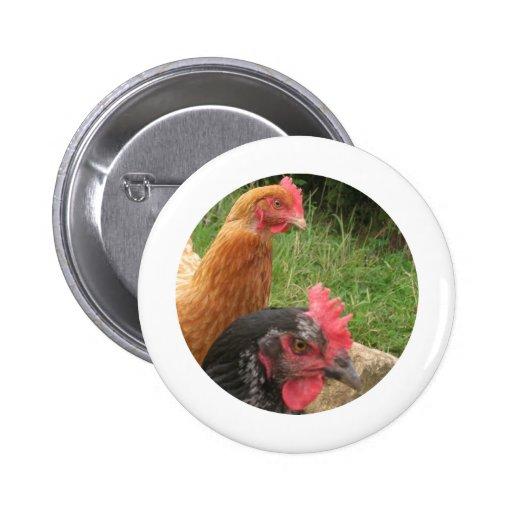 Pollo Pins