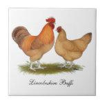Pollos de color de ante de Lincolnshire Azulejo