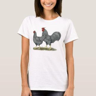 Pollos de Dominique Playera