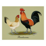 Pollos de Penedesenca Poster