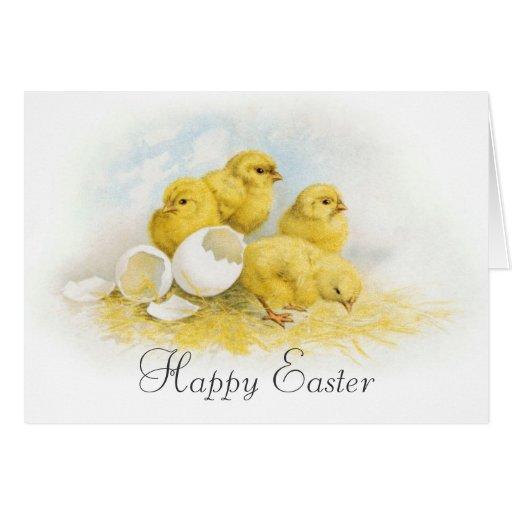 Pollos del bebé del vintage tarjeta de felicitación