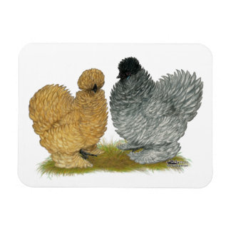 Pollos del chisporroteo imanes de vinilo