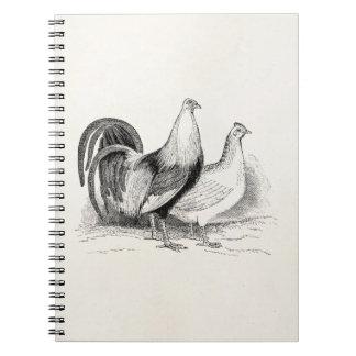 Pollos del gallo de los pájaros del pollo de las libro de apuntes con espiral