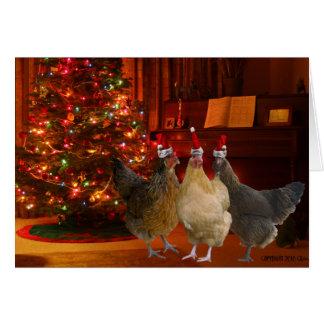 Pollos del navidad tarjeton