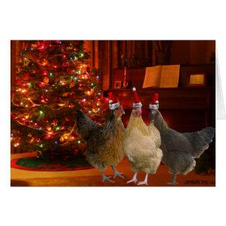 Pollos del navidad tarjetón