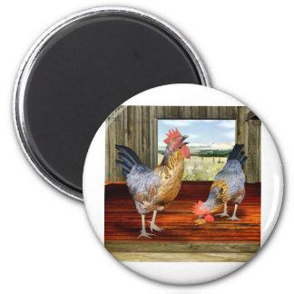 Pollos en granero imán redondo 5 cm
