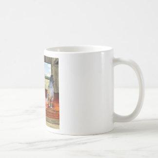 Pollos en granero tazas de café