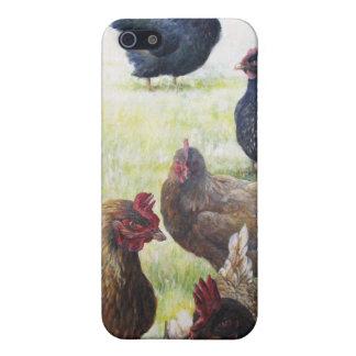 pollos iPhone 5 cárcasas