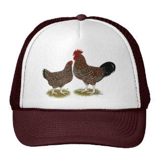 Pollos manchados de Sussex Gorros