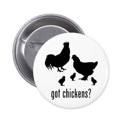 Pollos Pins