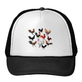 Pollos rústicos del vintage del collage del gallo gorras