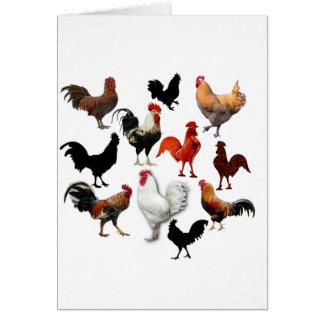 Pollos rústicos del vintage del collage del gallo tarjeta de felicitación