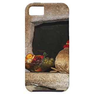 Pollos y fruta de la paja en la repisa, España iPhone 5 Carcasas