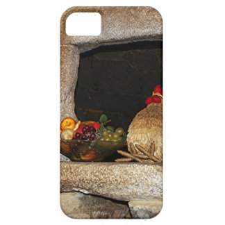 Pollos y fruta de la paja en la repisa, España iPhone 5 Funda