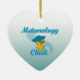 Polluelo #3 de la meteorología adorno navideño de cerámica en forma de corazón