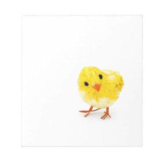 Polluelo amarillo lindo del bebé bloc