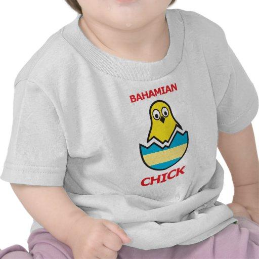Polluelo bahamés camisetas