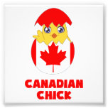 Polluelo canadiense, chica de Canadá Arte Con Fotos