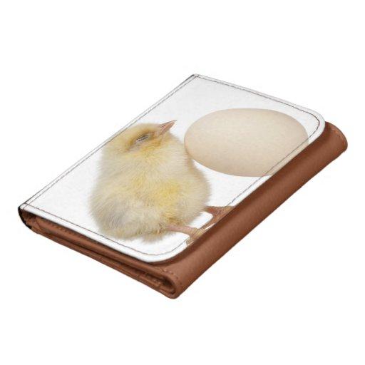 Polluelo con el huevo (2 días de viejo)