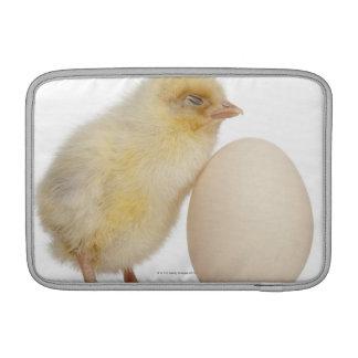 Polluelo con el huevo (2 días de viejo) fundas macbook air