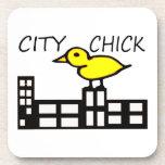 Polluelo de la ciudad