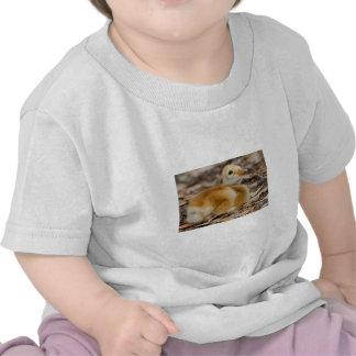 Polluelo de la grúa de Sandhill Camiseta