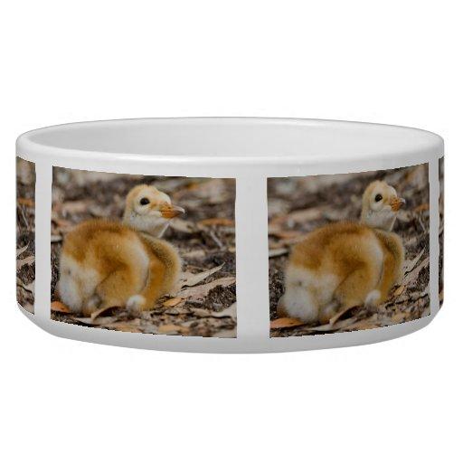 Polluelo de la grúa de Sandhill Tazones Para Perro