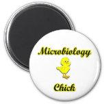 Polluelo de la microbiología imán de nevera