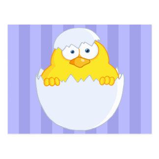 Polluelo de Pascua Postal
