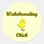 Polluelo de Wakeboarding Pegatinas Redondas