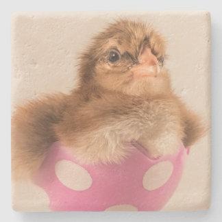 Polluelo del bebé en el huevo de Polkadot Pascua Posavasos De Piedra
