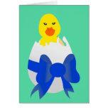 Polluelo del bebé felicitaciones