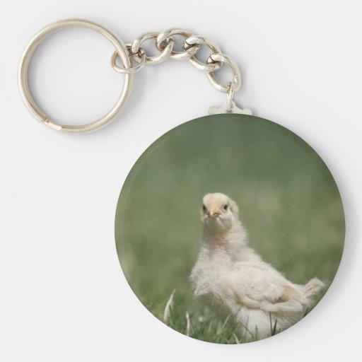 Polluelo del bebé llavero redondo tipo pin
