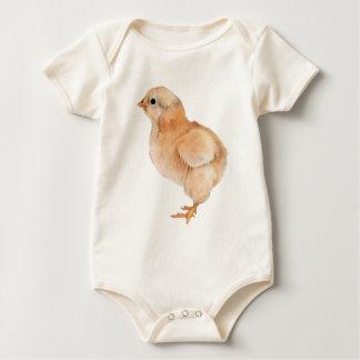 Polluelo del bebé mameluco
